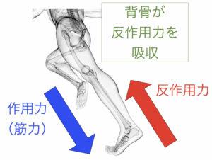 作用反作用の法則