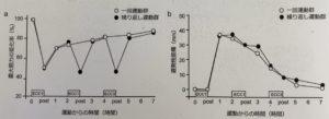 最大筋力と筋痛の変化